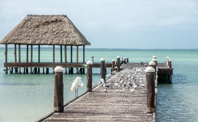 Holbox - Playas económicas en México