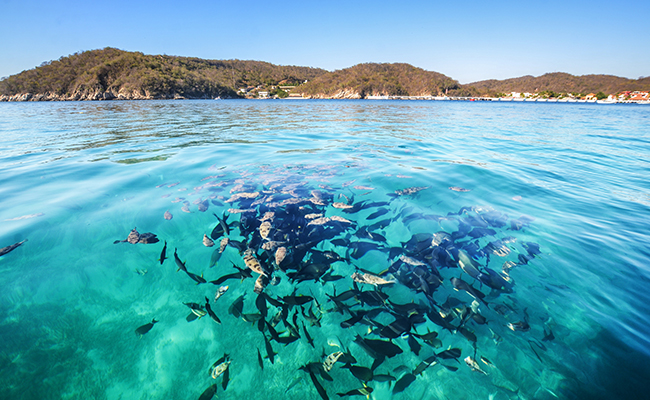 Puerto Escondido - Playas económicas en México